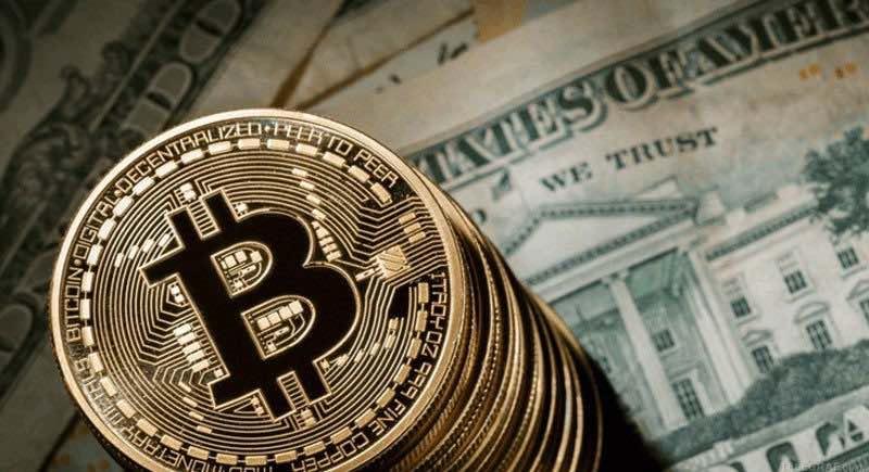 câștigați bani pe Internet cu plata instantanee